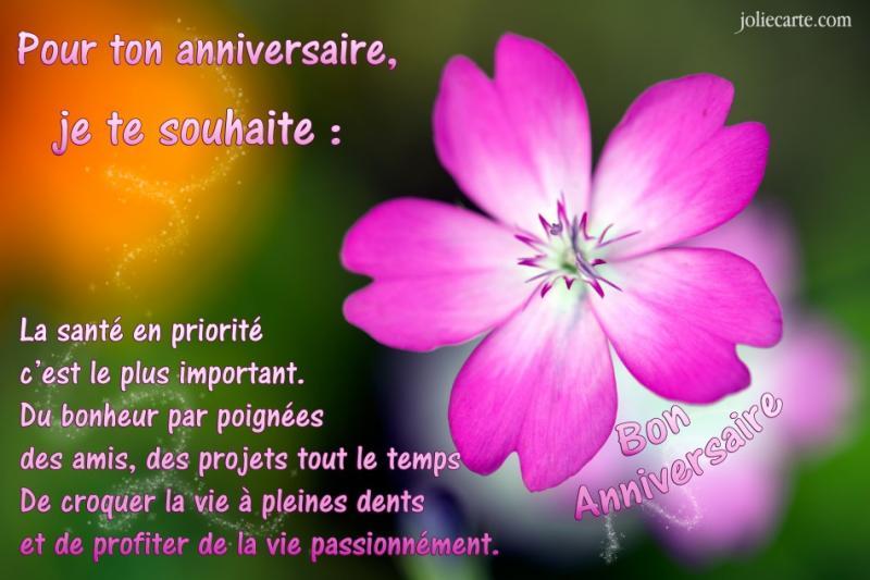 Bon Anniversaire Lisette Entre Prés Et Champs