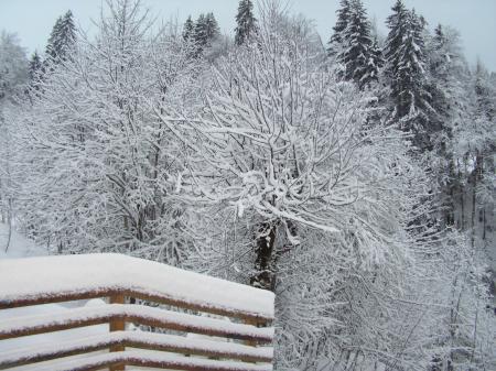 C 39 est l 39 hiver qui frappe notre porte entre pr s - C est l hiver qui frappe a notre porte ...