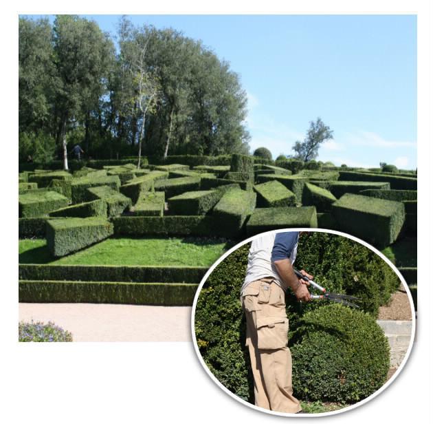 Les jardins suspendus de marqueyssac en dordogne entre for Entretien jardin dordogne