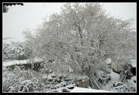 La neige dans les yvelines florette for Que voir dans les yvelines
