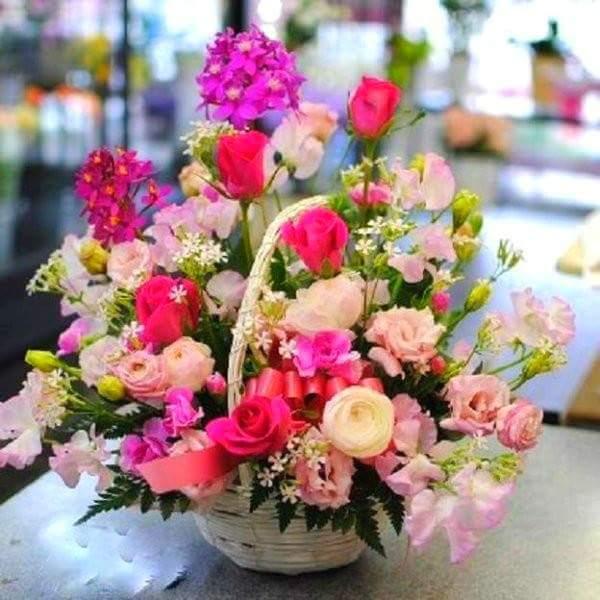 pas évident, pour reprendre le rhytme du blog.pleins de bisous à  vous. Un bouquet de fleurs virtuel pour vous envoyer le soleil.