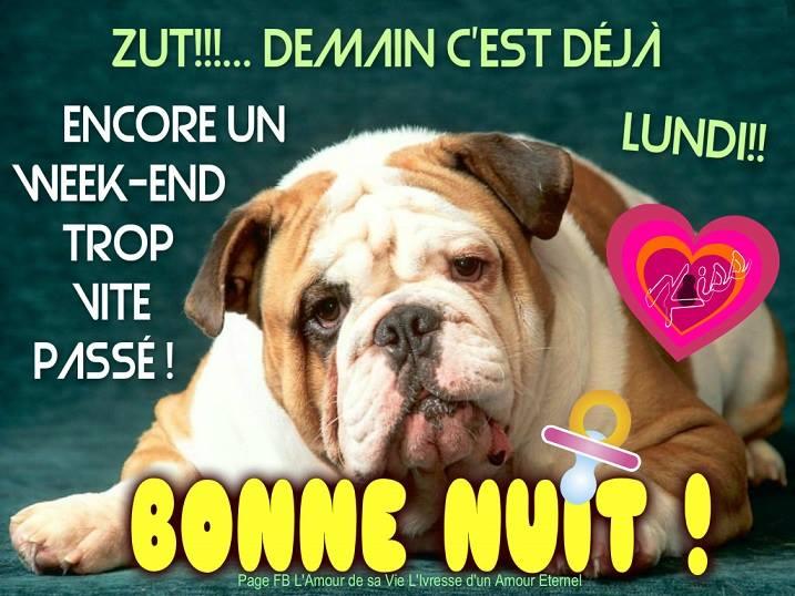 BONNE SEMAINE - Le bonheur est éphémère...