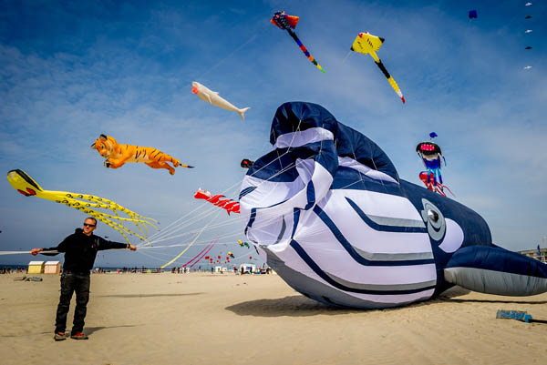 rencontre internationale berck