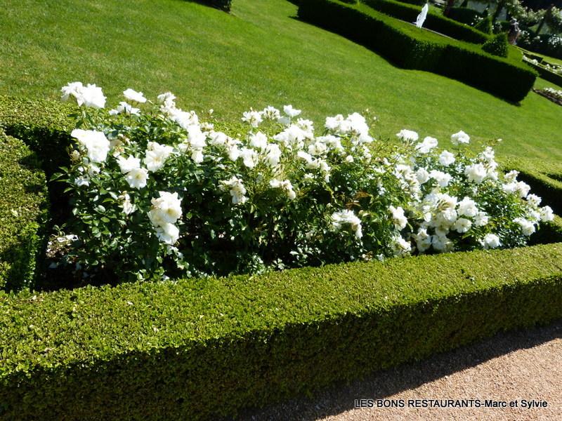 Les jardins du manoir d 39 eyrignac 24 le jardin blanc les - Jardin du manoir d eyrignac ...