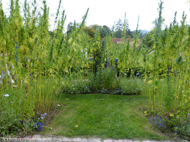 Wesserling 68 le labyrinthe aux clairi res les bons for Jardin wesserling