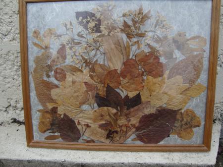 Tableau a base de p tales s ch es avec passion - Petales de roses sechees ...
