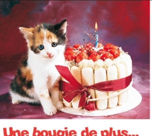 Joyeux Anniversaire Emilie 15 Ans De Nous Tous La Vie Agreable