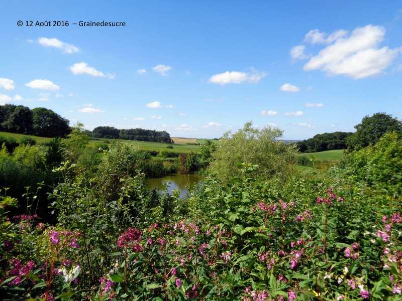 Le jardin du mont des r collets chambre d 39 eau et for Le jardin domont