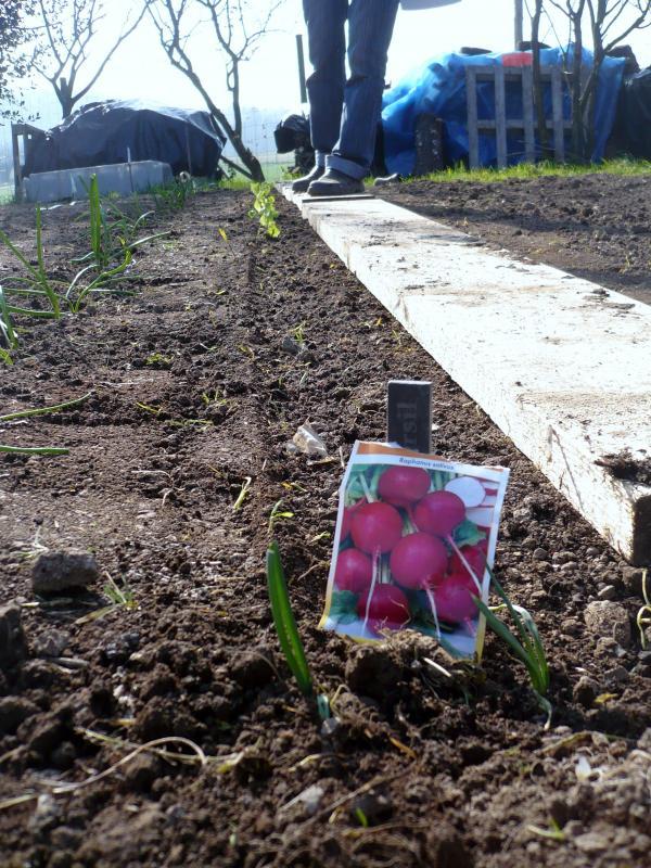 Au potager le blog de titanique for Blog jardin potager