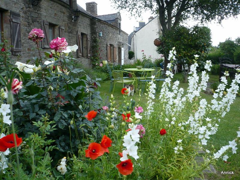 Le parfum des fleurs du jardin ! - Le blog de Titanique