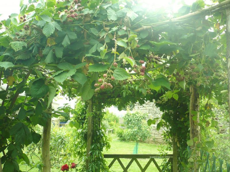 Les m res de jardin le blog de titanique - Articles de jardin ...