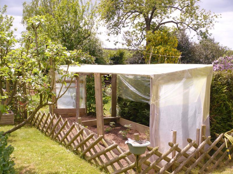 tomates sous abri le blog de titanique. Black Bedroom Furniture Sets. Home Design Ideas