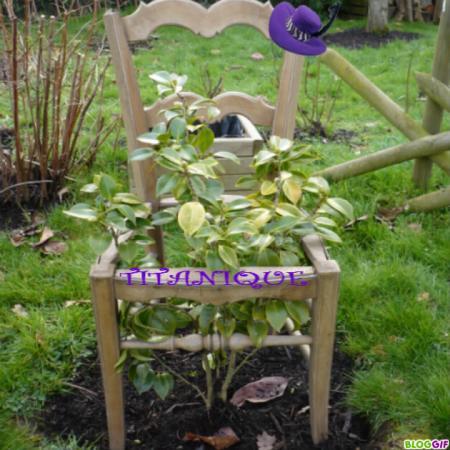 Une nouvelle d co au jardin pour pas un rond le blog for Blog deco jardin