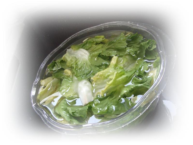 Comment r cup rer une salade fl trie la guillaumette for Comment recuperer une mayonnaise