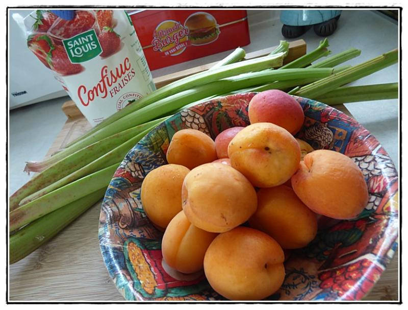 confiture abricot rhubarbe thermomix