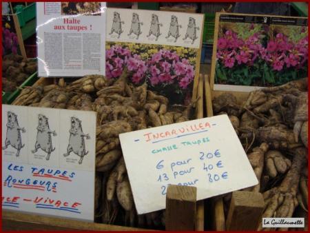 Le 4 mars 2010 au salon de l 39 agriculture nature et vie - Salon del agriculture ...