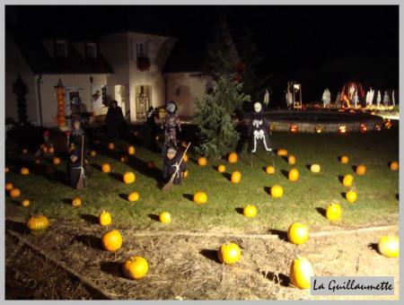 Le jardin d 39 halloween la guillaumette for Jardin halloween