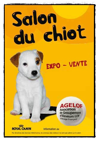 Salon du chiot royan 1er juillet 2012 la guillaumette for Salon des chiots