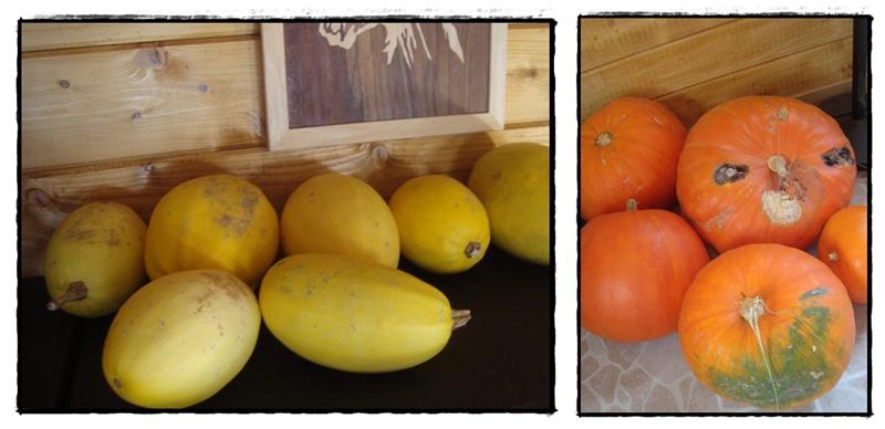 Un petit tour dans le chalet 1er octobre 2011 la guillaumette - Piquet de tomate ...