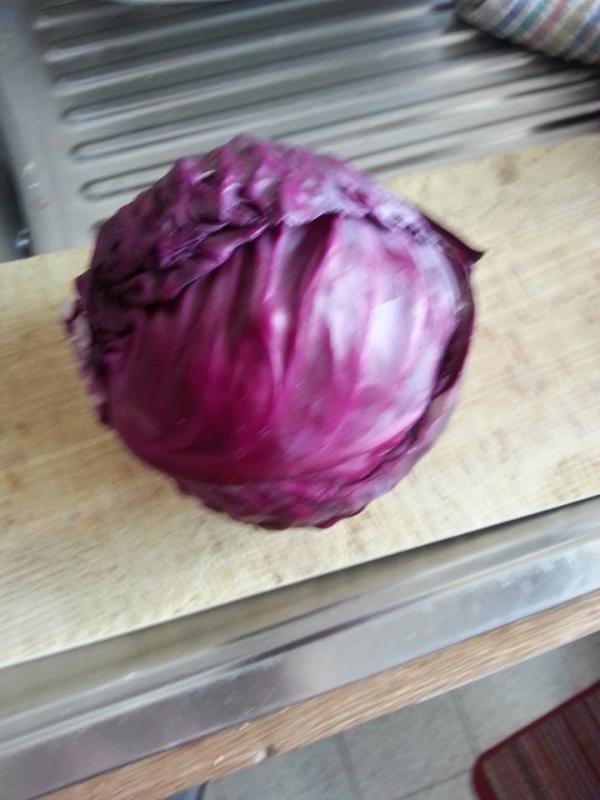 R colte de chou rouge cuisine simple - Quand planter des choux ...
