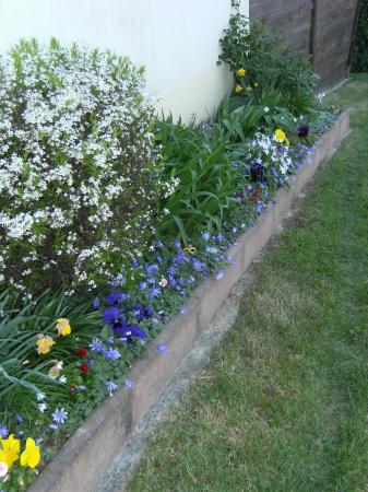 Un petit tour de jardin les 4 saisons de lilascat - Petit jardin plan de la tour tours ...