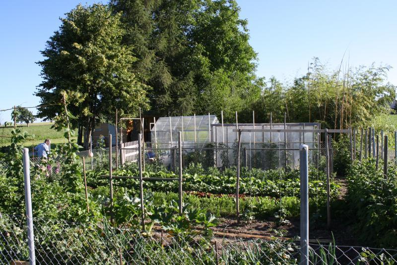 Le jardin potager en plein champ de mon emanuele le blog d 39 yvette c d for Blog jardin potager