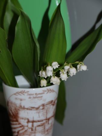 Fleur De Rhubarbe Les Neiges De La Caibotine