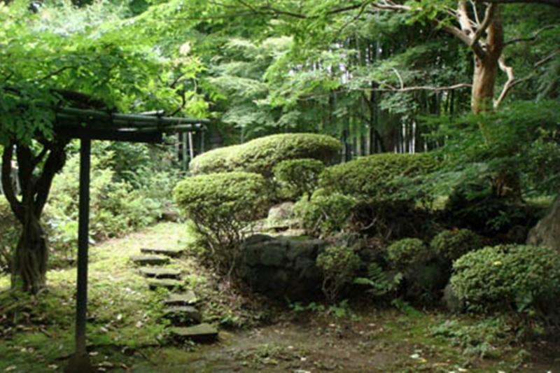 Les principes du jardin oriental chez marie loup for Jardin oriental