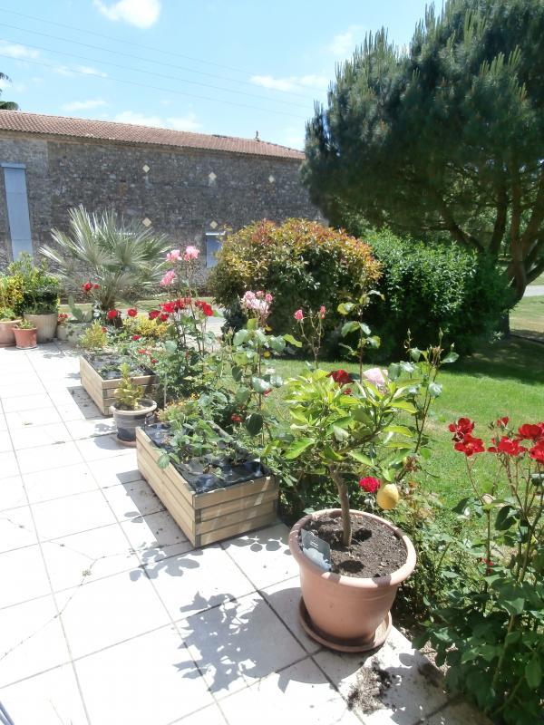 Le jardin des fleurs n est pas mal non plus 33gourmande for Le jardin qui dit non