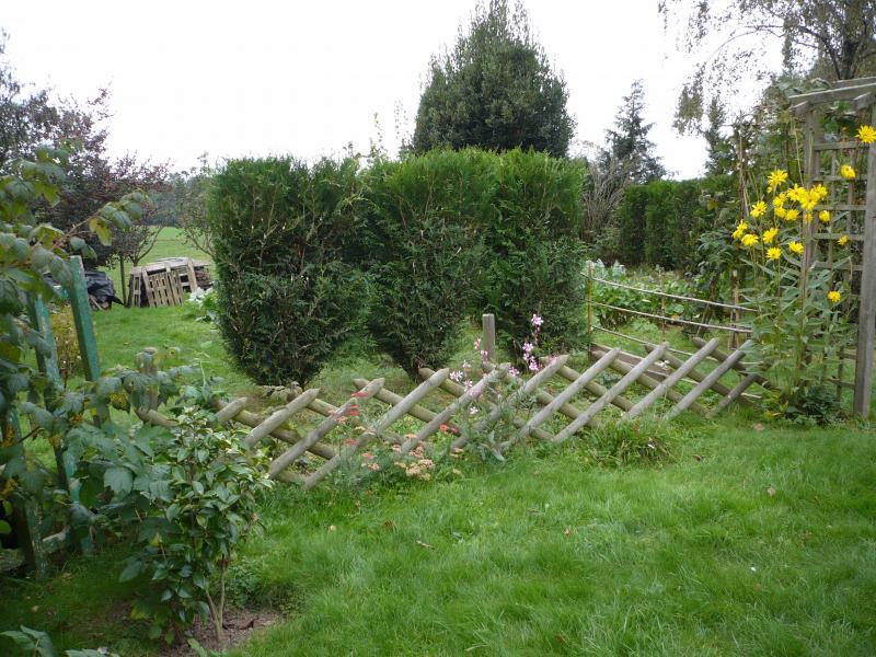 Le travail d 39 octobre au jardin le blog de titanique for Jardin octobre