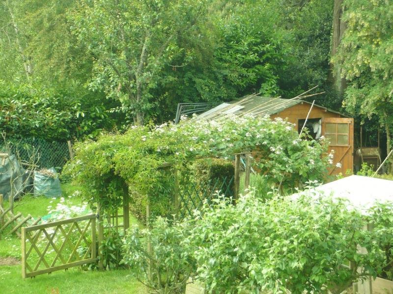 Un petit tour au jardin le blog de titanique - Petit jardin plan de la tour tours ...