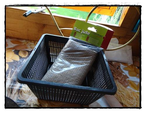 le papyrus dans la fontaine 23 juin 2012 la guillaumette. Black Bedroom Furniture Sets. Home Design Ideas