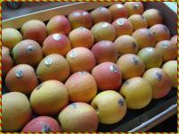 Conserver ses pommes tout conna tre des fruits et l gumes avec les conseils d entretien du - Conserver pommes coupees ...