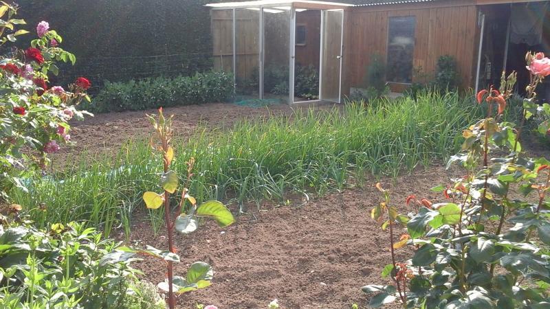 On entre c t jardin les conseils d entretien du jardin for Conseil entretien jardin