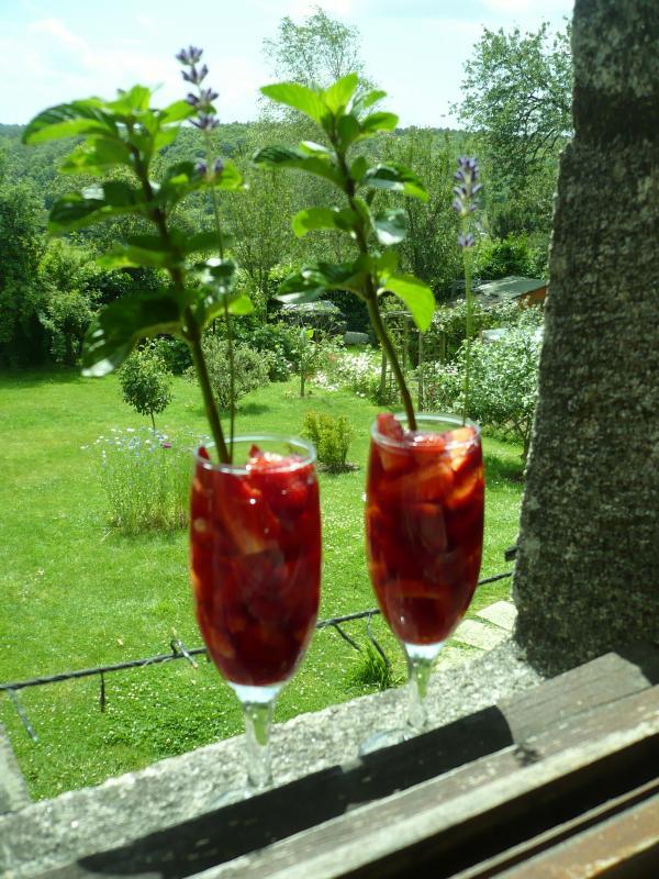 cocktail aux fraises du jardin le blog de titanique. Black Bedroom Furniture Sets. Home Design Ideas