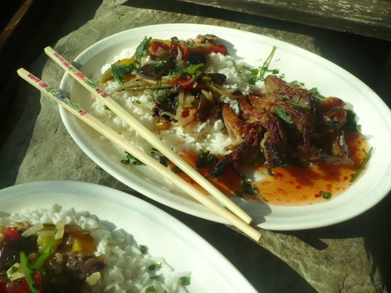 Magret de canard grill fa on asiatique le blog de titanique - Cuire un magret de canard ...