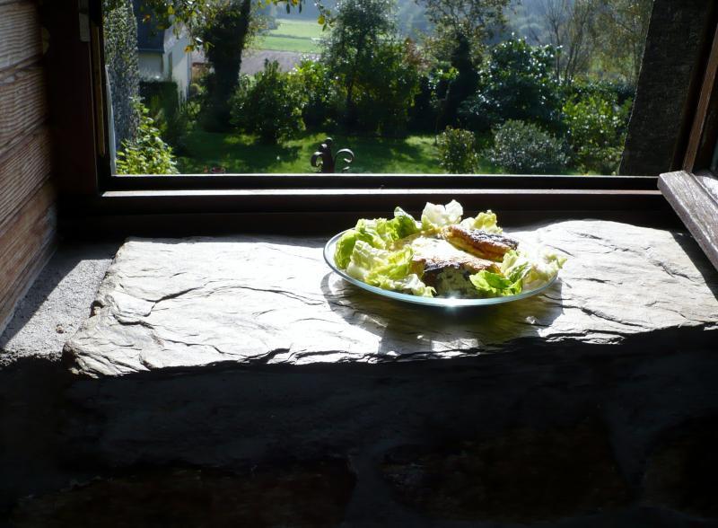 Omelette l 39 oseille du jardin le blog de titanique - Planter de l oseille ...